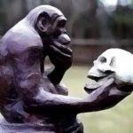 Primate_recitacon teschio